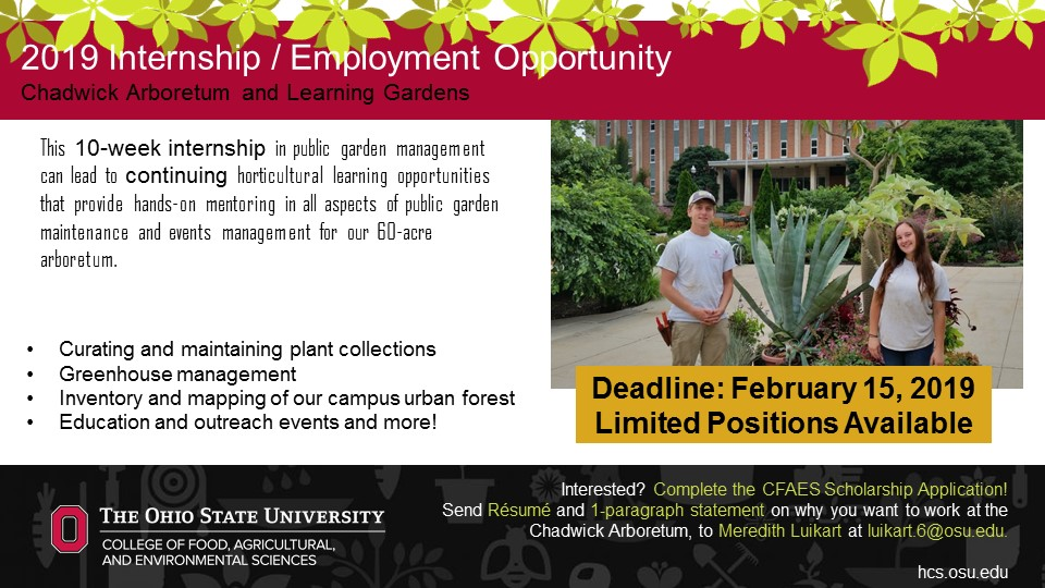 Summer Internship Program Application Information