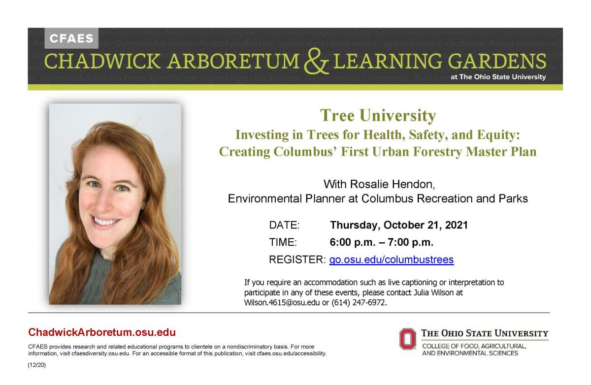Tree University Flyer