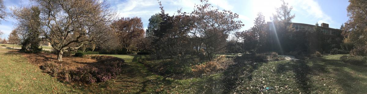 Chadwick Arboretum in fall