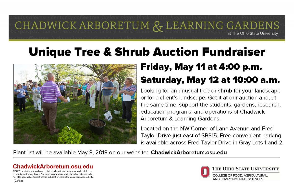 Unique Tree & Shrub Auction Fundraiser
