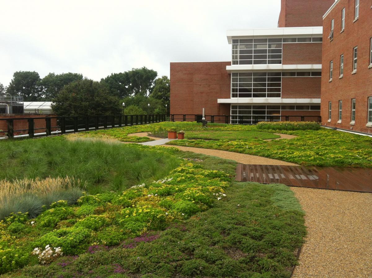 Green Roof On Howlett Hall Chadwick Arboretum Amp Learning