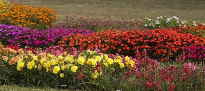 Learning Gardens - Cultivar Trial Gardens