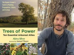 Trees of Power Book and Akiva