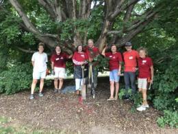 Volunteers under a tree